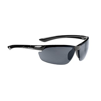 Alpina glasses Draff black