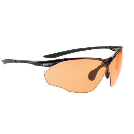 Alpina Splinter VL Brille different. Versions