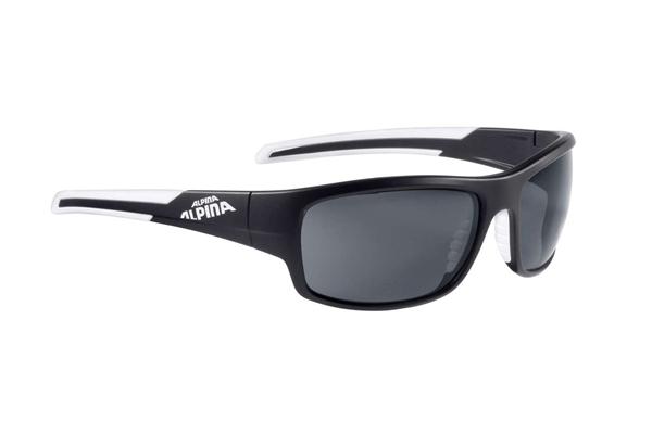 Alpina glasses Testido P black matt-white